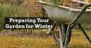 Get Ready for Your Winter Garden